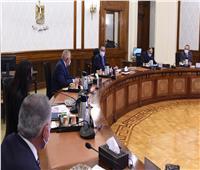«مدبولي» يُتابع مع رئيس «الهيئة العربية» خطة تصنيع 1000 عربة بضائع