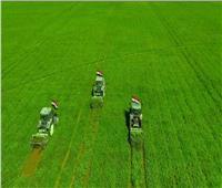 نقيب الفلاحين: مشروع «مستقبل مصر» أفضل نموذج زراعي بالشرق الأوسط