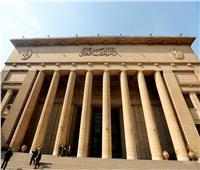 المؤبد لمتهم بـ«ولاية داعش القاهرة»