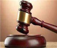نيابة المنيا: حبس المتهم بقتل سيدة وطفلها بـ«الساطور» 15 يوما