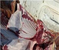تحرير 10 محاضر والتحفظ على لحوم مذبوحة خارج المجازر الرسمية في بني سويف