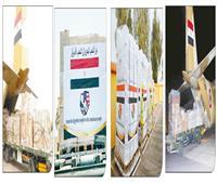 صحة المصريين بخير | شحنات طبية لـ 30 دولة إفريقية