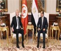 الرئيس السيسي: قضية الأمن المائي المصري جزء من الأمن القومي العربي