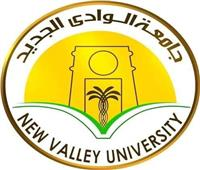 «التعليم العالي» تعتمد معامل مركز تكنولوجيا المعلومات بجامعة الوادي الجديد