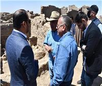 سفير الإمارات يحضر المؤتمر الصحفي للإعلان عن الكشف الأثري في الأقصر| صور