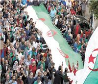 الشباب .. «الظهير السياسى» الجديد لمشروع الرئيس الجزائرى