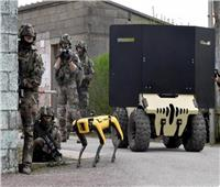 الكلب الروبوت «Spot» يشارك في ساحات المعارك | فيديو