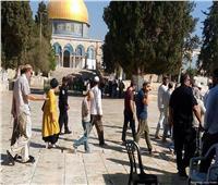 45 مستوطنًا إسرائيليًا يقتحمون باحات المسجد الأقصى
