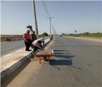 رفع 90 طن مخلفات وقمامة في المنيا