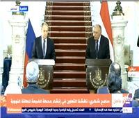 وزير الخارجية: روسيا سيكون لها دور في حل أزمة سد النهضة