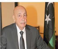 رئيس«النواب الليبي»: نتطلع لتسهيل منح التأشيرات مع اليونان
