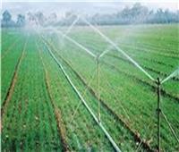 البحوث الزراعية توضح فوائد  الرى الحديث و استصلاح الأراضي | فيديو