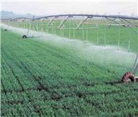 الزراعة: الدولة تستثمر جهودها في تطبيق منظومة الري الحديثة لترشيد المياه