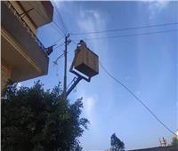 حملة لصيانة أعمدة الكهرباء على الطريق الزراعى في دمنهور