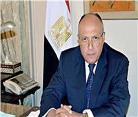 وزير الخارجية: الرئيس السيسى استعاد مكانة مصر داخل القارة الأفريقية 