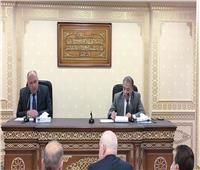 وزير الخارجية يكشف حقيقة تأثر مصر بالملء الثاني لسد النهضة الإثيوبي