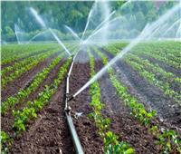 الزراعة: منظومة الري الحديث مفعلة في جميع أرجاء مصر