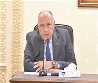 وزير الخارجية: نتابع سد النهضة بشكل يومي ومستعدون لأي ضرر