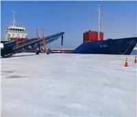 قناة السويس: استقبال 189 سفينة بموانئ المنطقة الشمالية خلال مارس