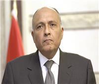 وزير الخارجية : العالم يواجه صعوبات فى توفير لقاحات كورونا بشكل عادل