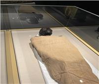 في اليوم الأول... 2000 زائر شاهدوا قاعة المومياوات الملكية بمتحف الحضارة