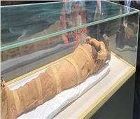 متحف الحضارة: السماح بصلاحية تذكرة الدخول لمدة 3 شهور