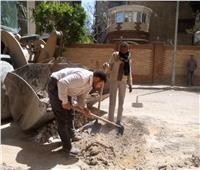 حملة نظافة موسعة وإصلاح أعطال في الحوامدية بالجيزة | صور