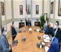 السيسي يجتمع مع وزير قطاع الأعمال لبحث الاستغلال الأمثل لأصول وأراضي الوزارة