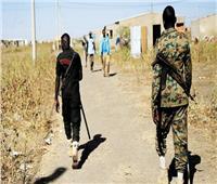 الجيش السودانى: قادرون على حماية حدودنا المحررة