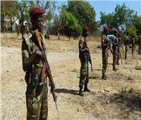 جماعة مسلحة تسيطر على مقاطعة شمال إثيوبيا