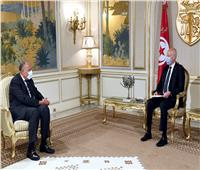 قيس سعيد: ندعم مصر للوصول لحل عادل بأزمة سد النهضة