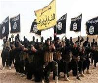 قاضي الجنايات قبل النطق بالحكم على «خلية داعش»: مصر وطنللشرفاء