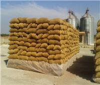 مد أجل الحكم على 11 متهم بقضية «فساد القمح الكبرى» لـ24 مايو