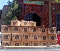 جامعة طنطا توزع 300 كرتونة مواد غذائية للأسر الأكثر احتياجاً بزفتى
