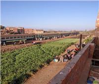 تصادم قطار منوف «بلودر» دون خسائر بشرية