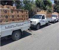 جامعة طنطا: توزيع 450 كرتونة مواد غذائية بقرى زفتى ضمن «حياة كريمة»