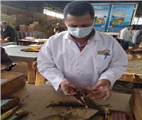 «الزراعة»: تكثيف الحملات على أسواق الفسيخ والرنجة خلال شم النسيم | صور