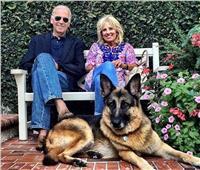 بعد تدريبه.. كلب الرئيس الأمريكي يعود للبيت الأبيض