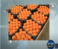 فتح أسواق جديدة للصادرات الزراعية المصرية بالخارج | فيديو