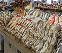 ضبط 99 كيلو أسماك فاسدة في بني سويف