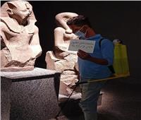 استمرار أعمال تعقيم وتطهير المتاحف الأثرية ضد كورونا | صور