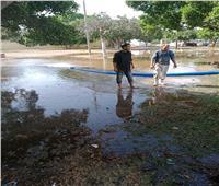 غلق الحدائق والمتنزهات والشواطىء العامة وغمرها بالمياهفي البحيرة