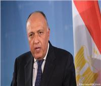 وزير الخارجية يدعو لوقف الهجوم الإسرائيلي على غزة