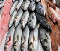أسعار الأسماك بسوق العبور في اليوم الـ٢٣ من شهر رمضان