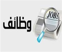 القوى العاملة بالقليوبية تعلن عن 200 وظيفة