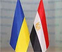 مجلس الإعمال «المصري الأوكراني» يضع استراتيجية جديدة للتعاون الاقتصادي