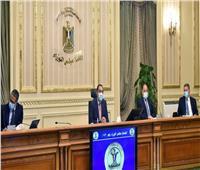 وزير التموين: موسم مميز لتوريد القمح.. وتوريد 1.2 مليون طن حتى الأمس