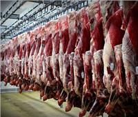 نقيب الفلاحين : قروض «البتلو» أسرع طرق الاكتفاء الذاتي من اللحوم