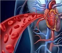 بالفيديو  عميد معهد القلب السابق: القلب يضخ 2 مليون برميل من الدم