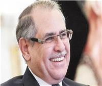 سفير مصر في روسيا: 50 شركة وقعت على عقود الاستثمار بشرق بورسعيد والسخنة.. فيديو